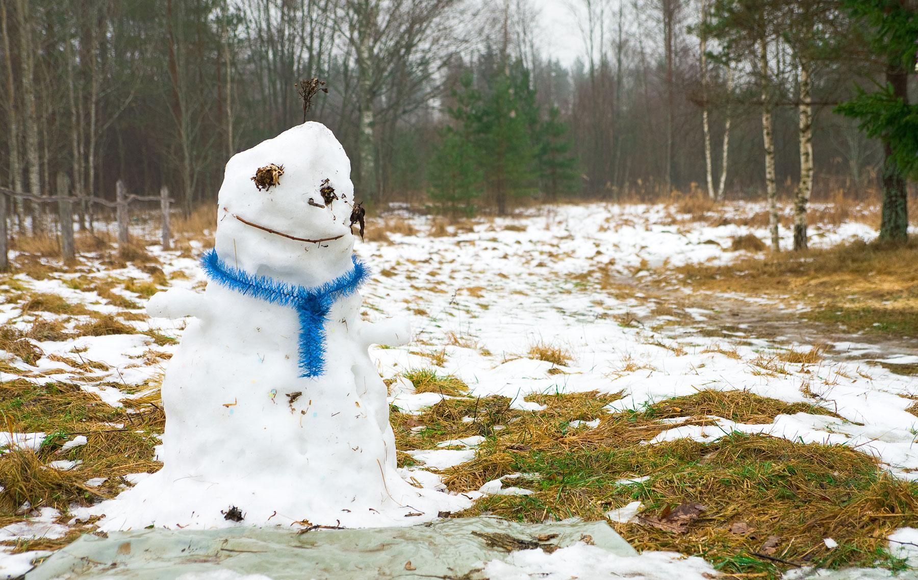 Свадебные фото зимой без снега в слякоть 4